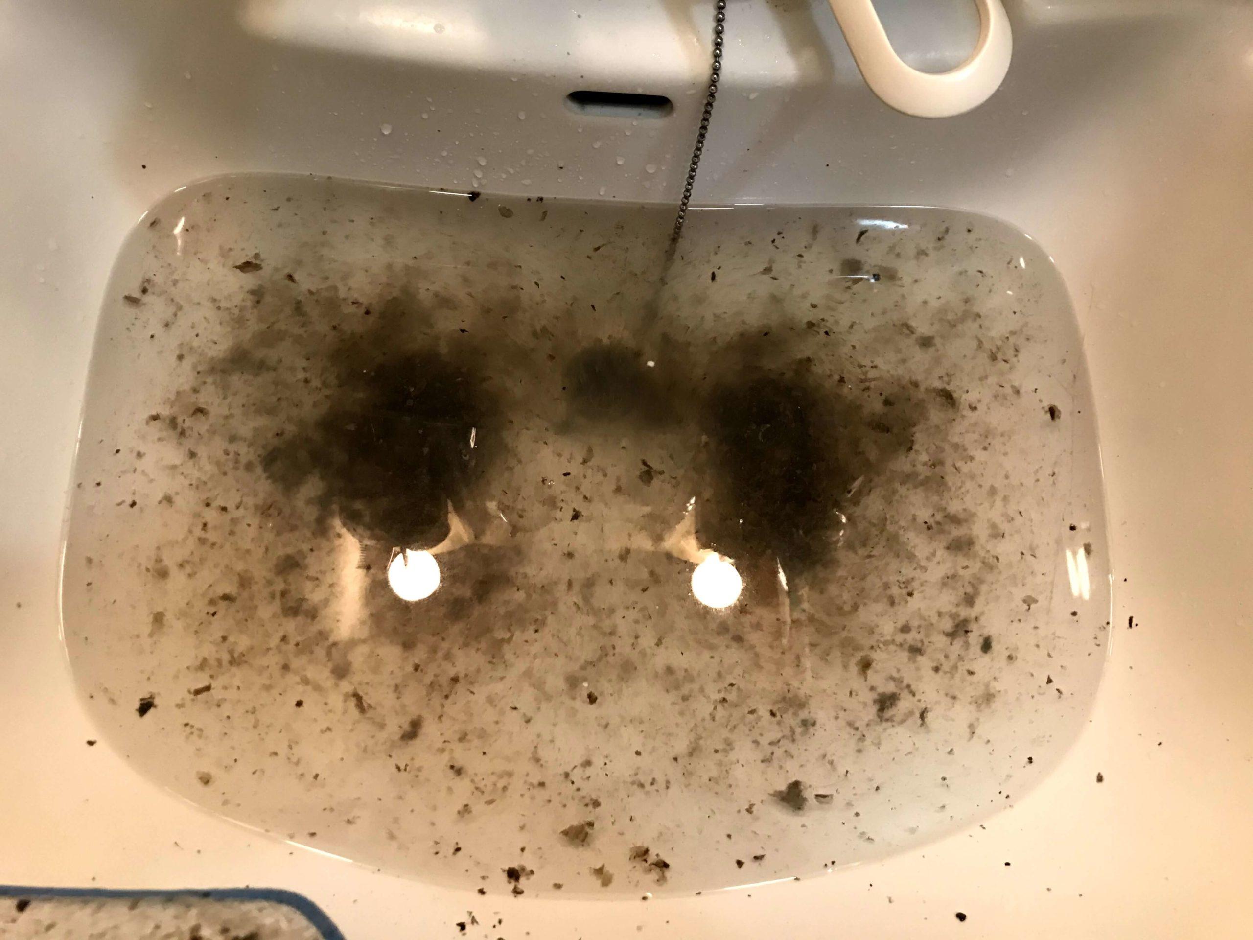 オキシクリーンで取れた洗濯槽の汚れ