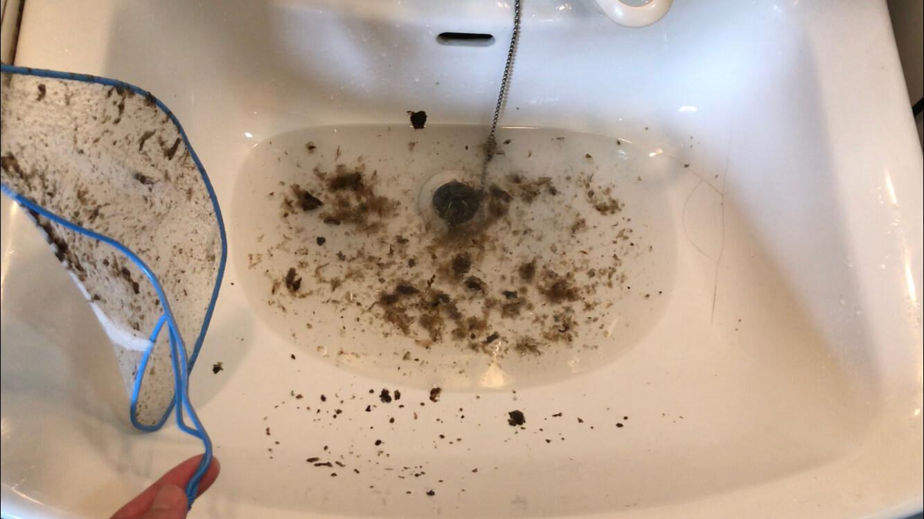 洗濯機から獲れたワカメ(ゴミ)
