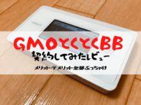 GMOとくとくBB レビュー